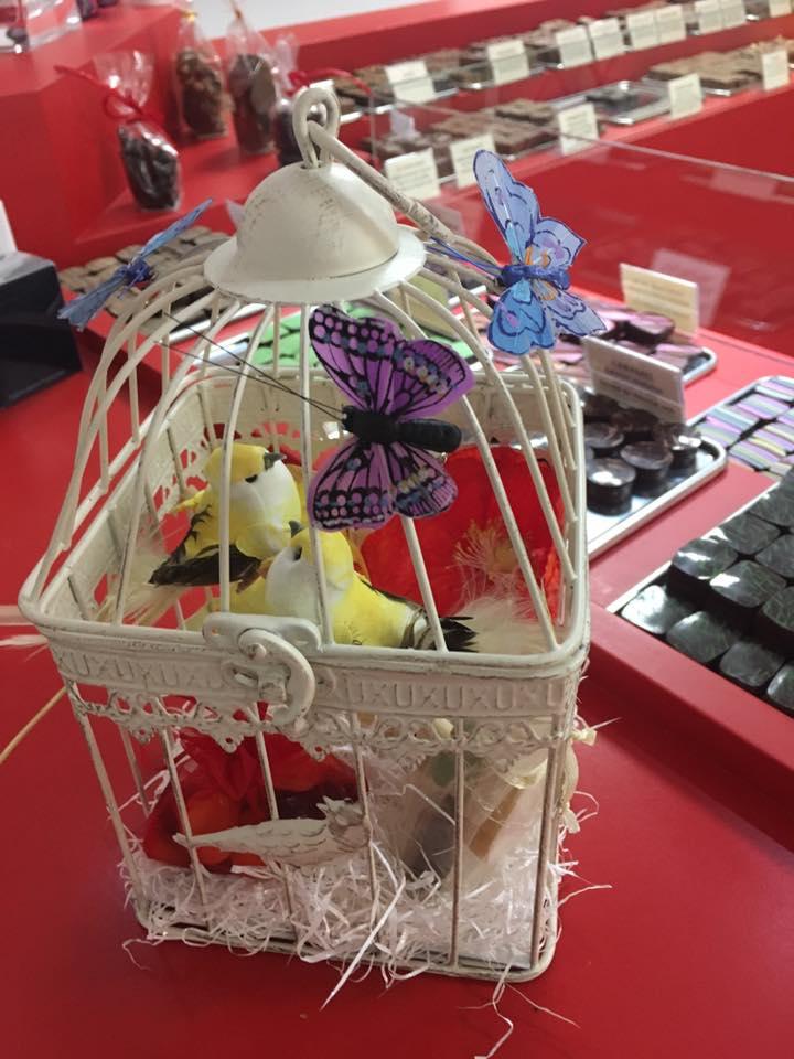 cage oiseau chocolat